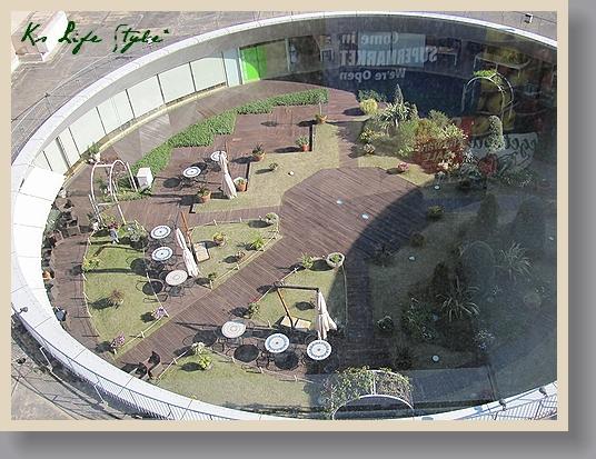 国際ビルの屋上庭園
