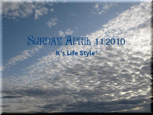 4月11日 くもりのち雨.