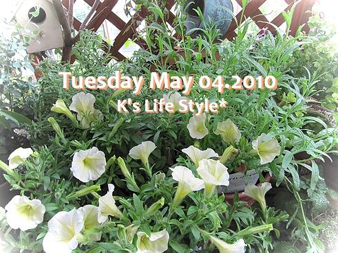 5月4日 晴れ