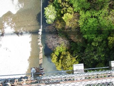 吊り橋から-1_R