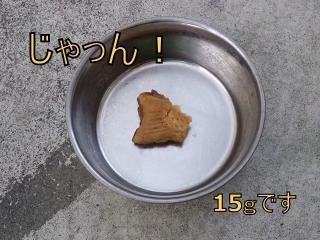 たい焼きと小鉄-2_R