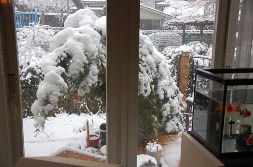 hace nieve 3
