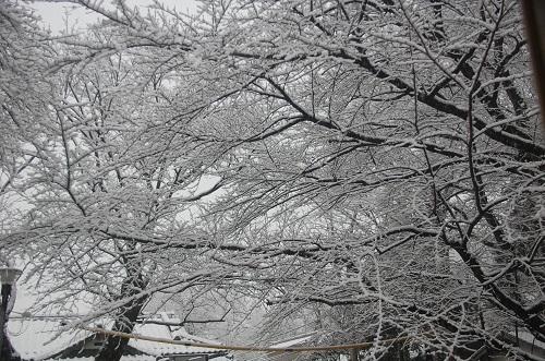 hace nieve 1
