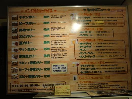 110331.御茶ノ水・エチオピア (9)