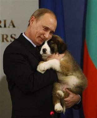 プーチン犬