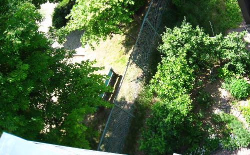 615屋根より公園