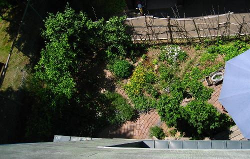 615屋根より庭