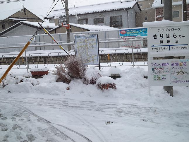 ←桐原駅はあっち