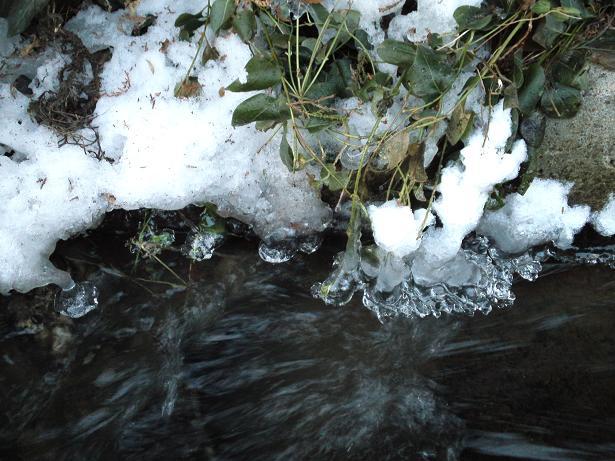 縁が凍る (2)