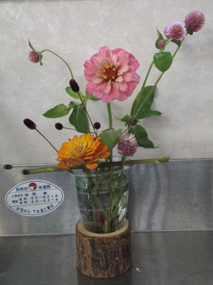 秋の花と夏の花 (2)