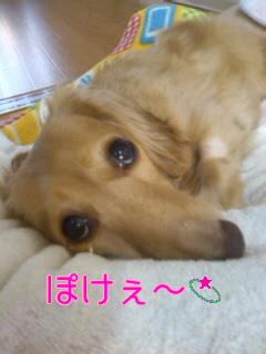 CASN2U8P.jpg
