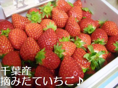 201001138385.jpg