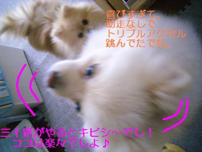 201001148402.jpg