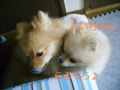 201001158415.jpg