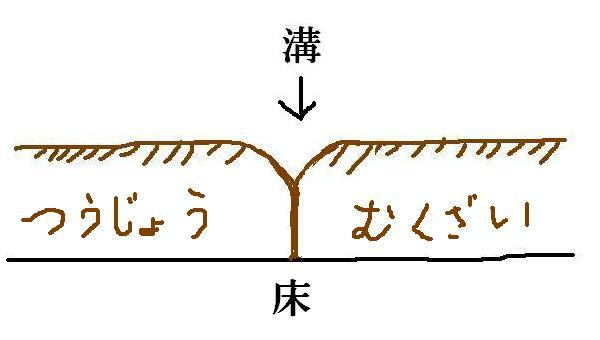 tsujyo1.jpg