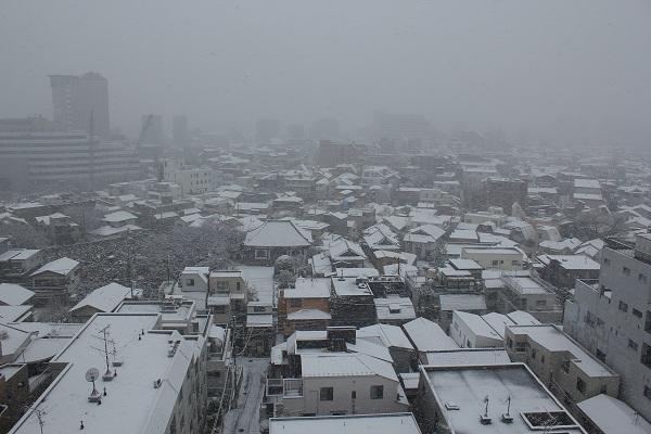 本駒込から雪景色