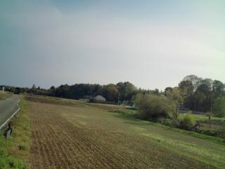 20100426155526.jpg