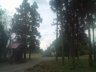 20101019135056.jpg