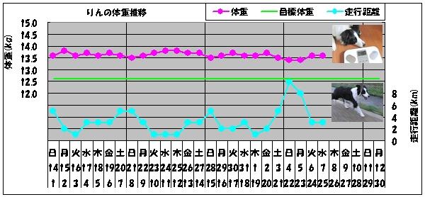 グラフ-0407