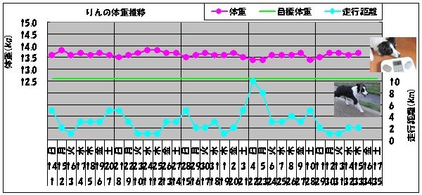 20100415-04
