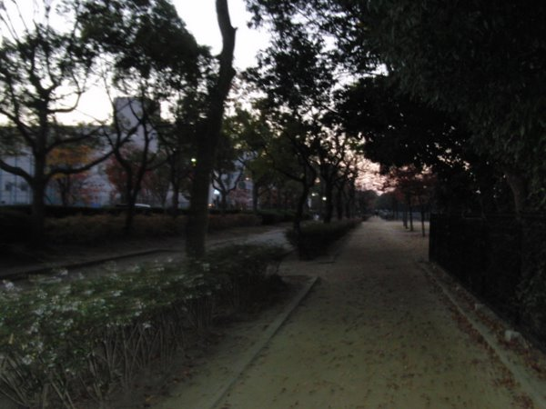 20101121-03