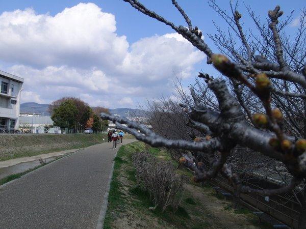 20110326-03.jpg