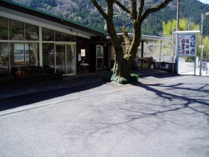 20100313-1 (15)