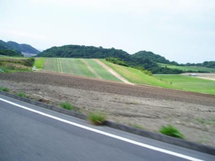 20100530 (8)