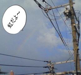 虹-crop