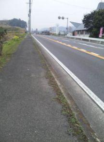 20120308012.jpg