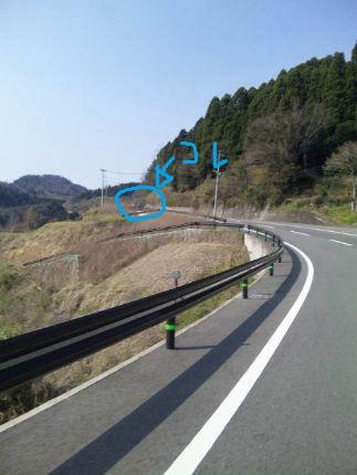 20120409011.jpg