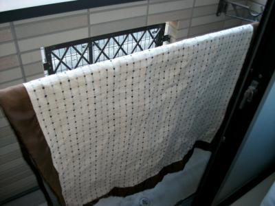 カーペット洗濯(2013.2.16)