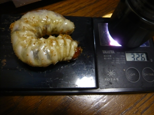 北峰KKB32.6g