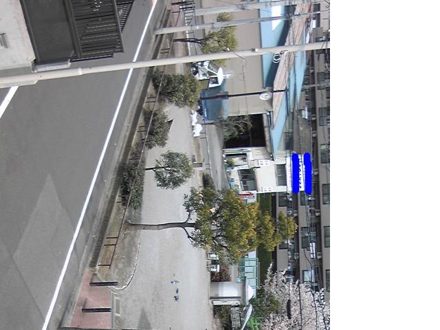 snap_kiritomo1_201040214952.jpg