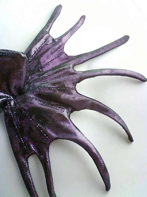 octopus_cape_d.jpg