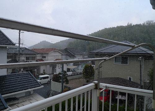 20091231 降雪①s