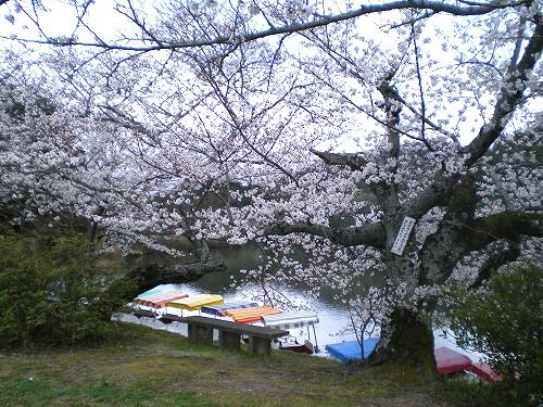 20100331 大池遊園①