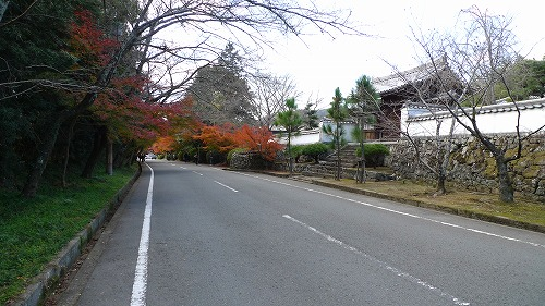 20101127 03
