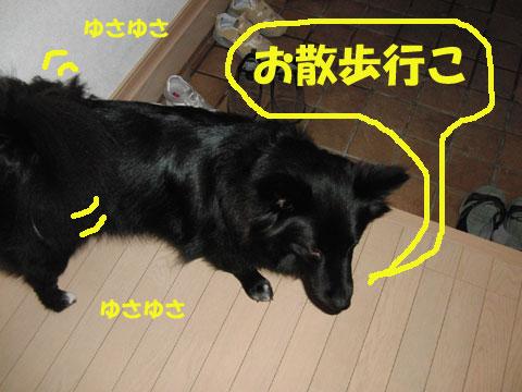 さんぽ~2
