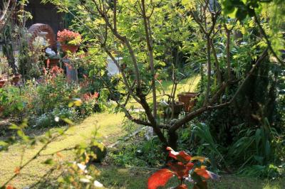 2009-11-08_04.jpg