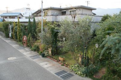 2009-11-08_100.jpg