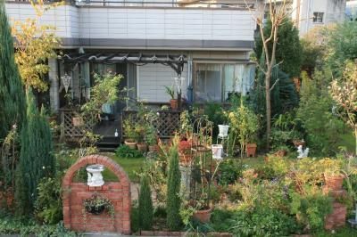 2009-11-08_55.jpg