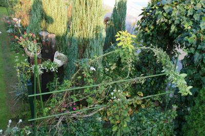 2009-11-08_79.jpg