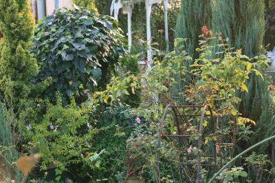 2009-11-08_87.jpg