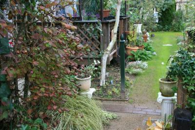 2009-11-22_42.jpg