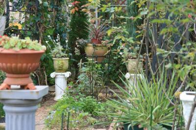 2009-11-23_19.jpg