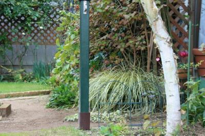 2009-11-23_46.jpg