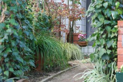 2009-11-28_17.jpg