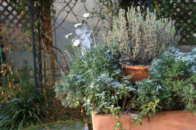 2009-12-21_02.jpg