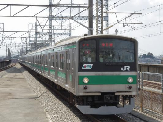 IMGP1229.jpg
